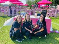 Our Team at the Liverpool One Dog Show 2021