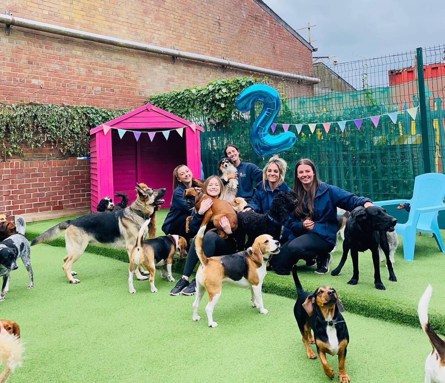 What We've Been up to This September at Faye's Doggy Boutique